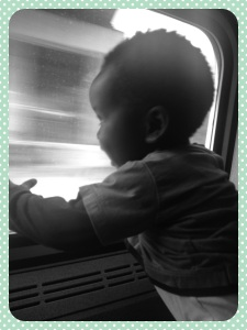 Munchkin watches excitedly as the world zooms by on his first train ride.